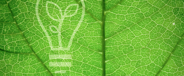 Miljöpolicy |